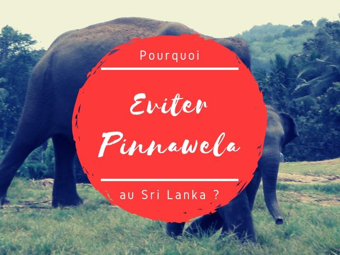 Elephants Pinnawela à eviter