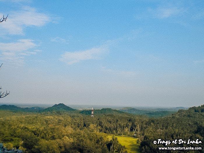 vue campagne sri lankaise