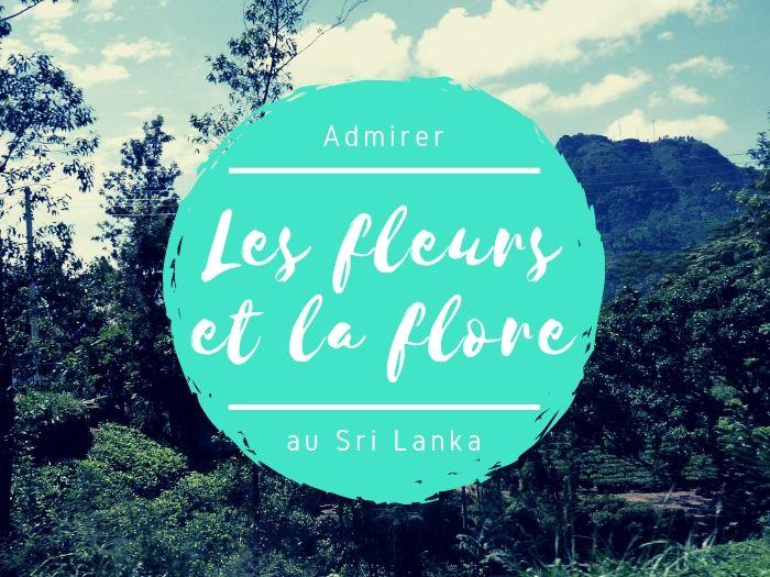 Fleurs et flore au Sri Lanka