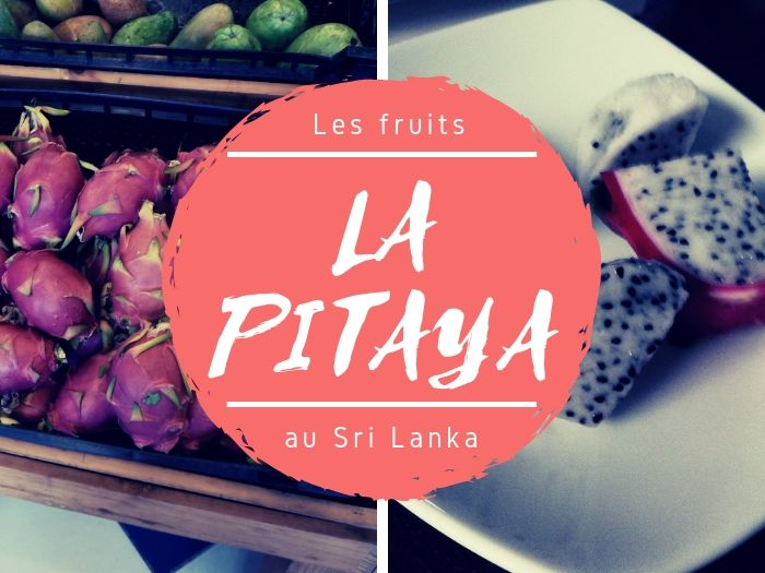 Pitaya fruit du dragon au Sri Lanka