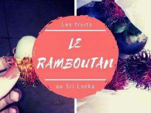 Les ramboutans au Sri Lanka