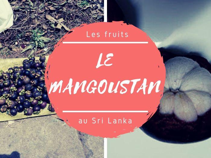 Fruits bizarres Mangoustan au Sri Lanka