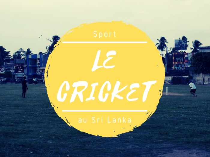 Le sport cricket au Sri Lanka