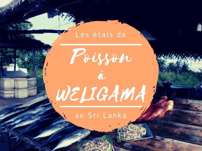 Les étals de poisson à Weligama au Sri Lanka
