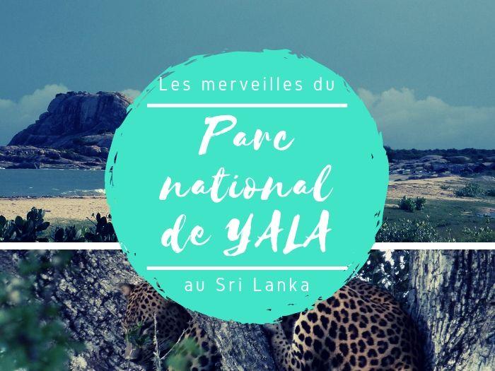 Parc national de Yala au Sri Lanka