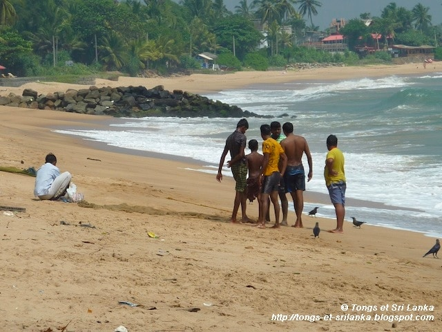 surf au sri lanka