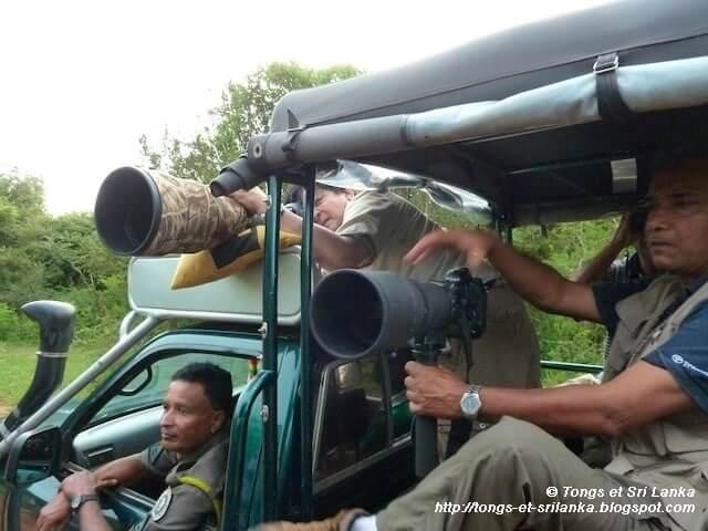 Un samedi, une photo sri lankaise #57