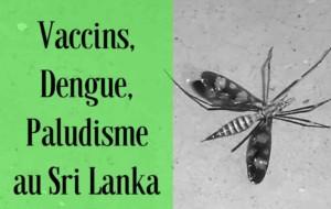 Vaccins, dengue, paludisme et moustiques au Sri Lanka : que prévoir ?