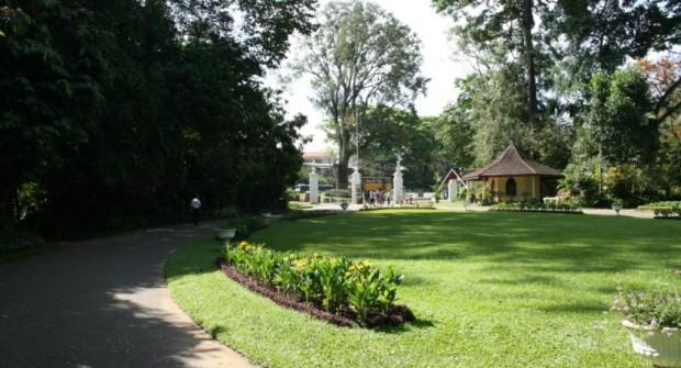 Kandy – Le jardin botanique ! #1