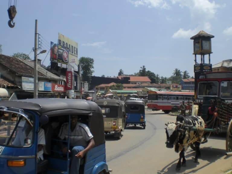 La conduite au Sri Lanka!