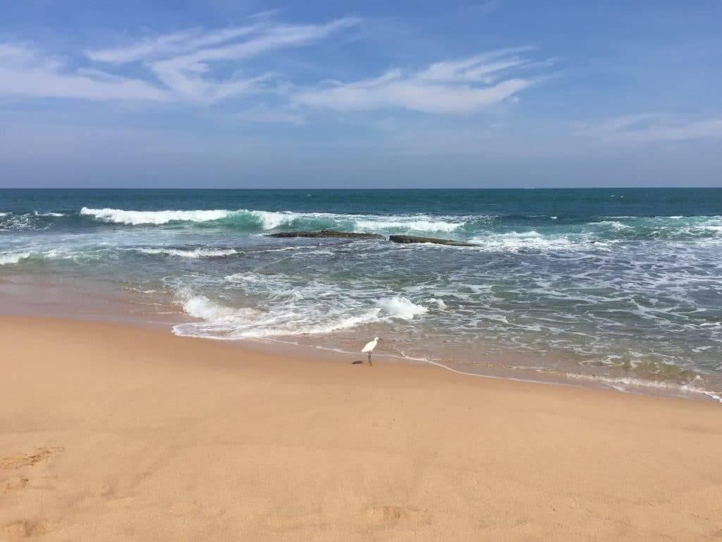 ocean a tangalle