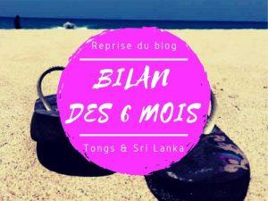 Bilan des 6 mois de la reprise du blog Tongs & Sri Lanka