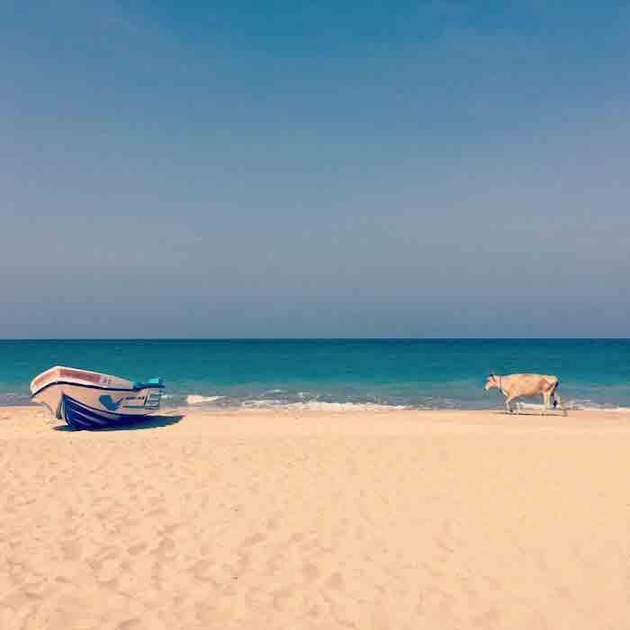 instagram-tongsetsrilanka-nilaveli