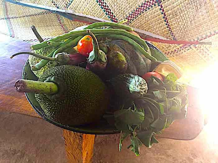 Priyamali-Gedara-farm-vegetables