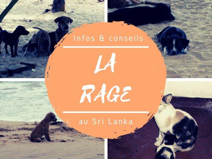Infos & conseils sur la rage au Sri Lanka