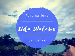 Uda Walawe parc national