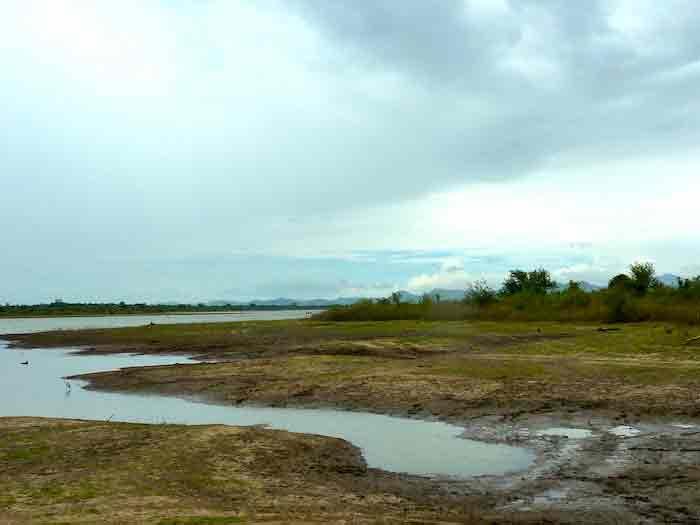 uda-walawe-paysage