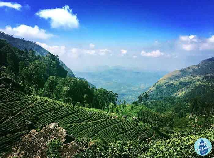 Les montagnes au Sri Lanka par Tongs et Sri Lanka à petit budget