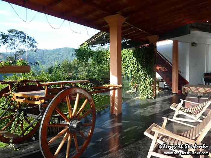 Ella région du thé au Sri Lanka