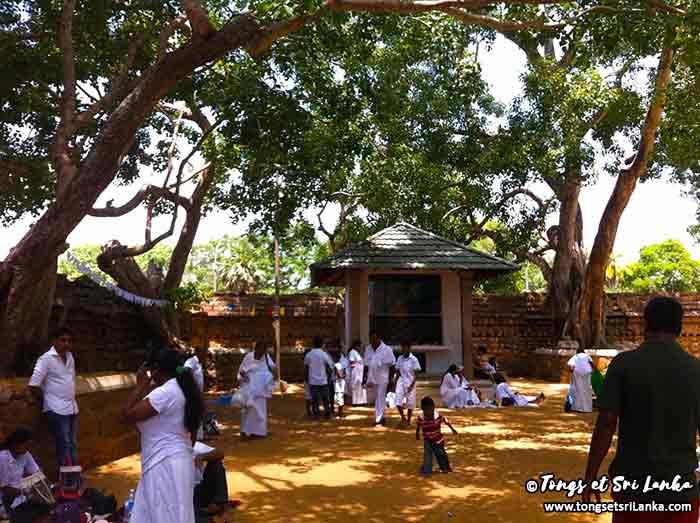 enceinte du temple bodhi au Sri Lanka
