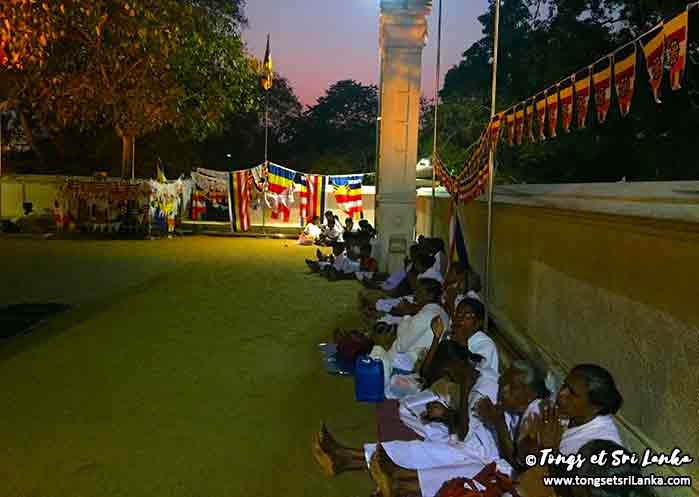 ferveur bouddhiste au sri lanka