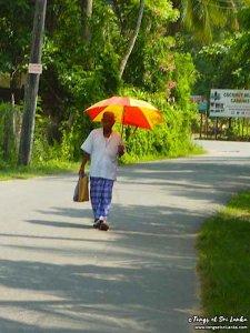 beau temps et parapluie pour la météo au Sri Lanka