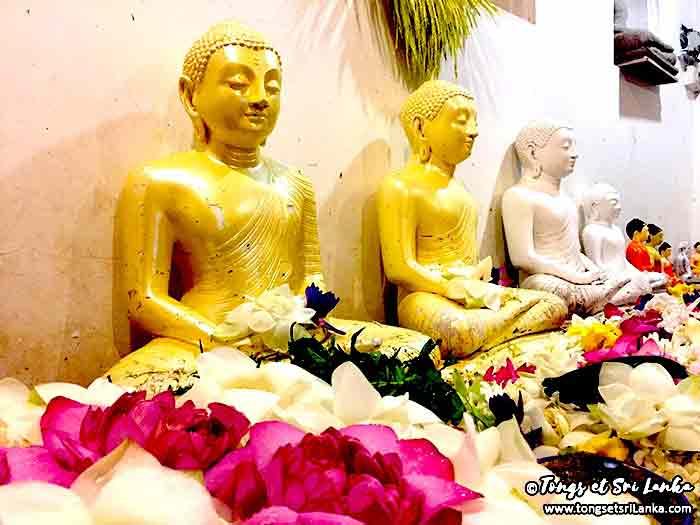 Offrandes à Bouddha au Sri Lanka