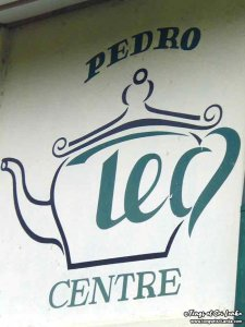 pedro centre usine à thé - plantations de thé au sri lanka - tongs et sri lanka
