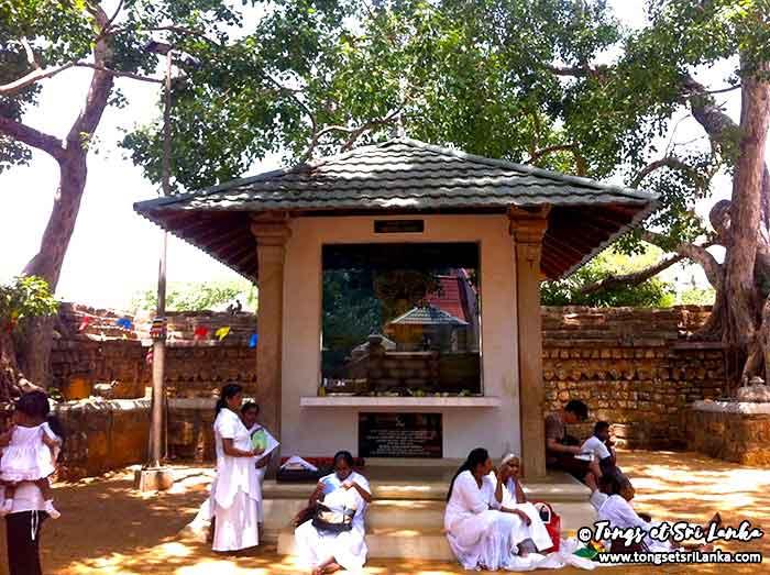 temple de l'arbre bodhi à Anuradhapura