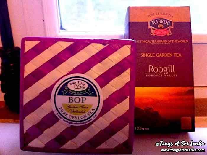 thé au Sri Lanka - plantations de thé au sri lanka - tongs et sri lanka
