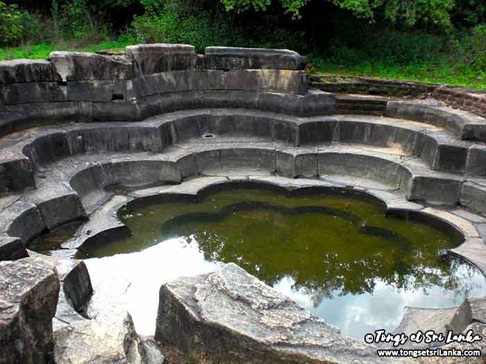 Bassin du lotus Polonnaruwa Sri Lanka