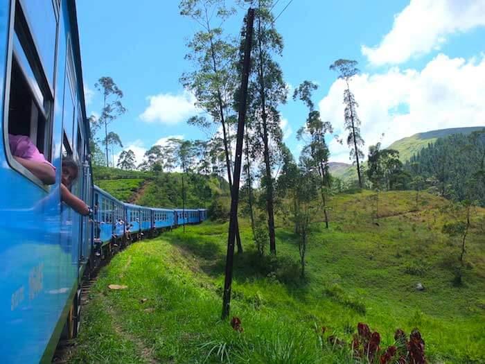 train dans les plantations de thé au Sri Lanka