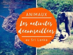activités touristiques déconseillées au Sri lanka avec des animaux
