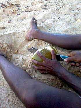 beach boy préparant de la noix de coco au Sri Lanka