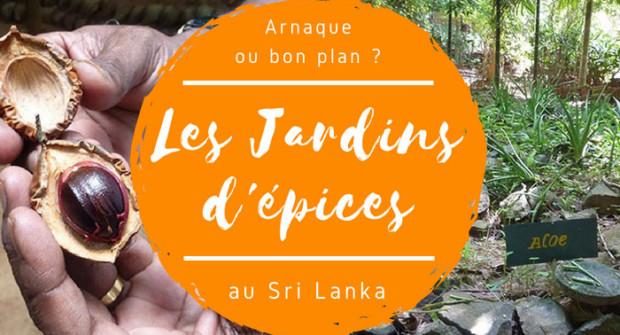 Le jardin d'épices au Sri Lanka (spice garden) : arnaque ou bon plan ?
