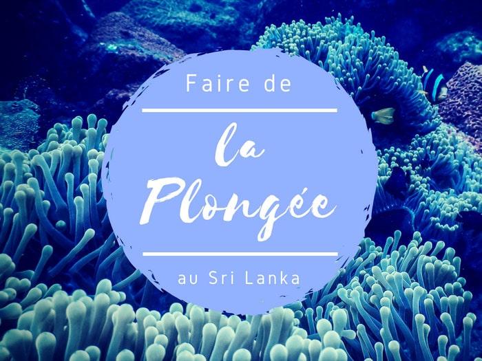 Faire de la plongée au Sri Lanka, un moment magique du côté de Nilaveli !