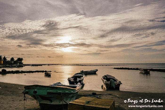 coucher de soleil sur point pedro au sri lanka