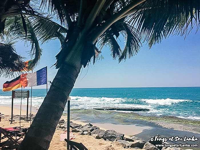 français au Sri Lanka