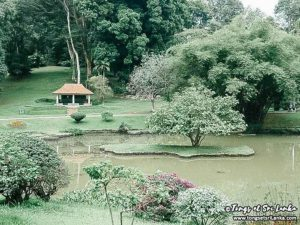 jardin botanique de Kandy