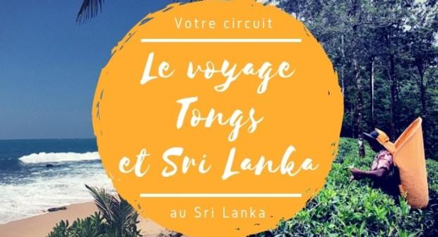 Le circuit individuel Tongs et Sri Lanka pour l'hiver 2019 !