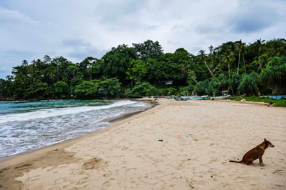 plages du sud hiriketiya