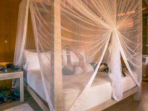 arugam bay jetwing surf chambre