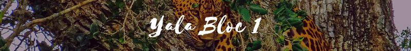 yala bloc 1