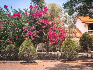 french nature villa