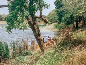 lac sigiriya
