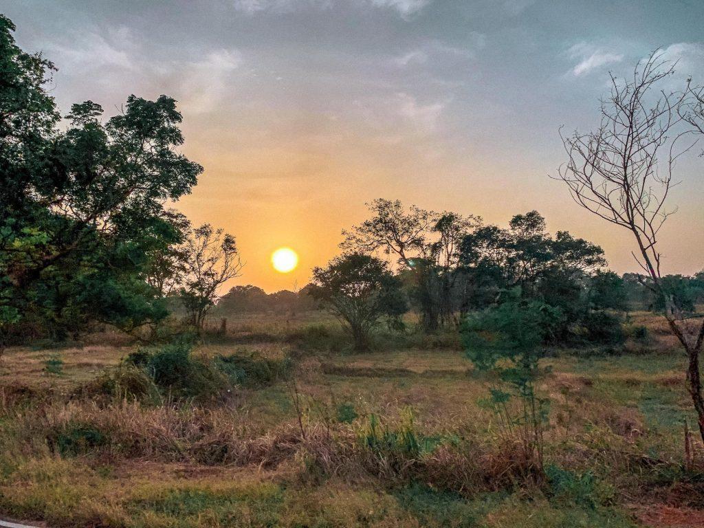 lever de soleil a wilpattu