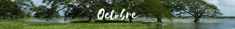 octobre au sri lanka
