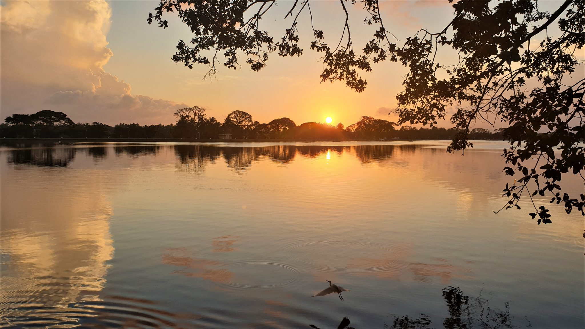 Le lac de Tissamaharama