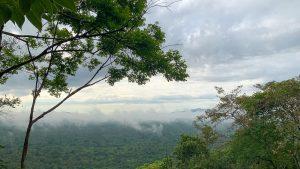 brume sur pidurangala