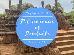 Polonnaruwa et Dambulla